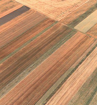 Експертна оценка на земеделски земи